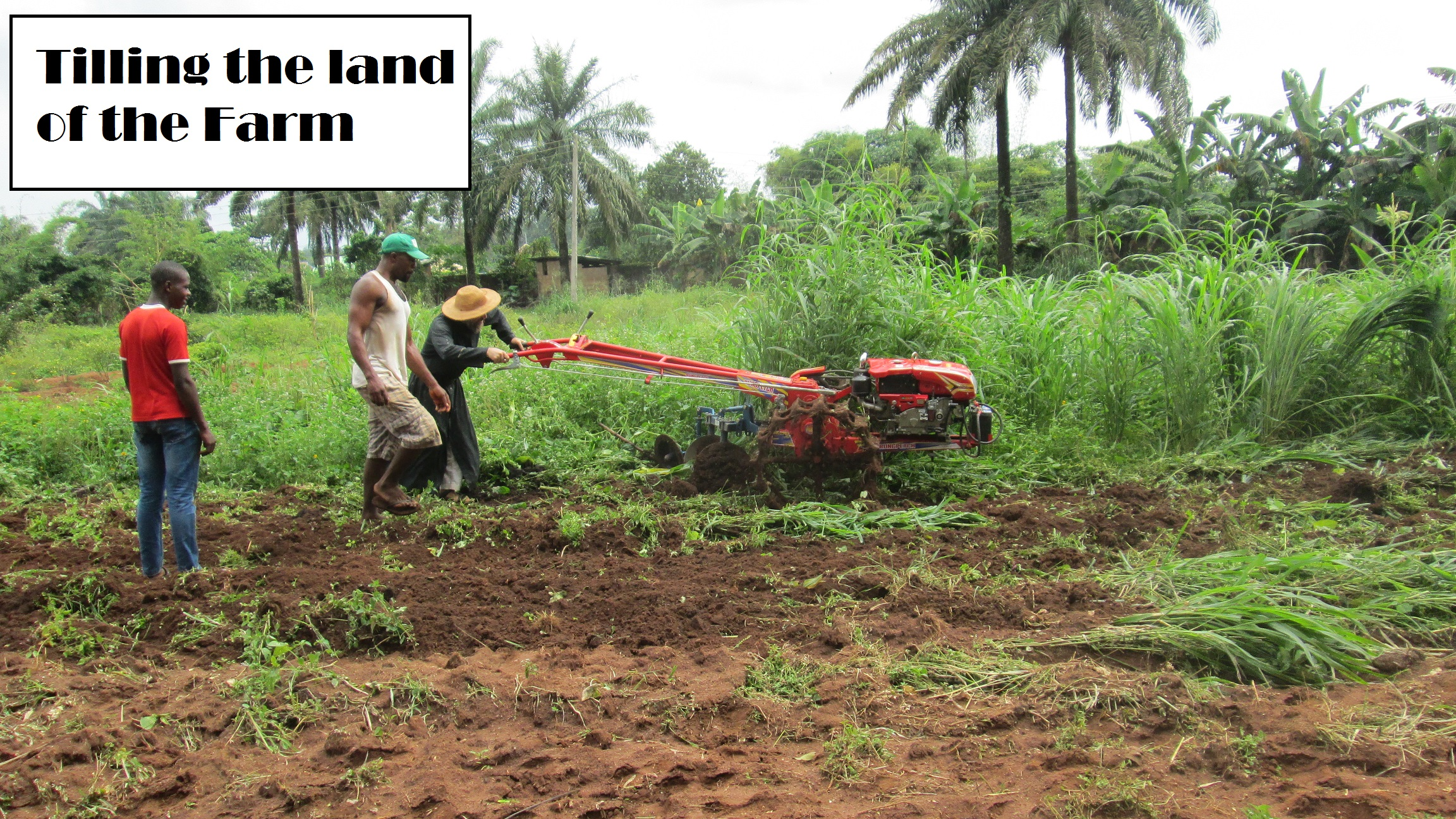 tilling the land.jpg